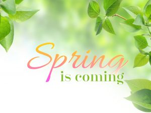 Spring is Coming – PSD Text Effects