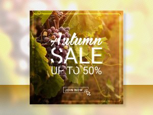 Autumn Sale up to 50 Social Media Templates